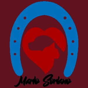https://mariosoriano.com/