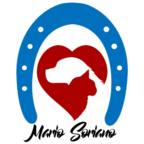 Mario Soriano